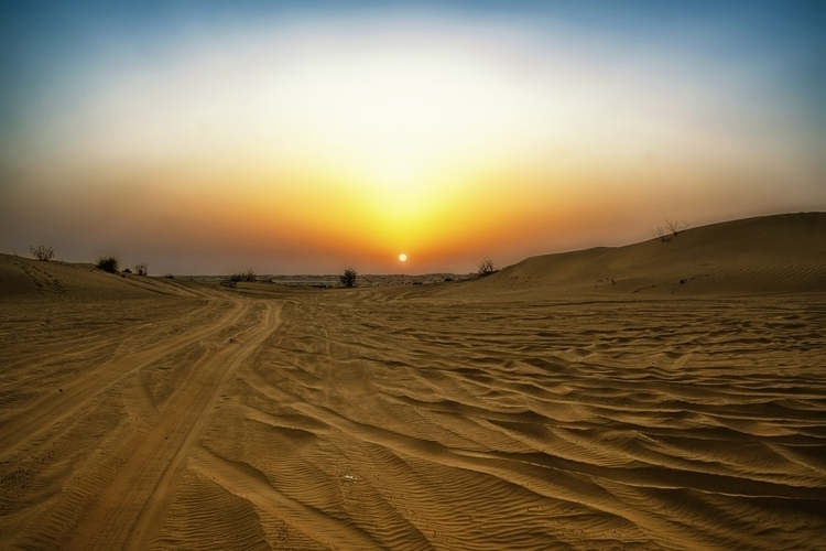 UAE Sahara Desert Safari - Photography - trolar | ello