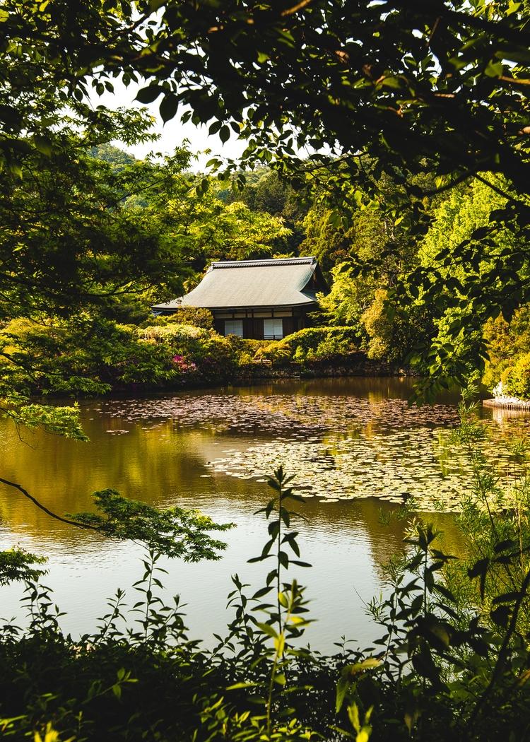 Japanese harmony - photography, travel - felixhohagen | ello