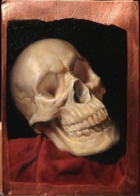 Small Skull Study oil painting  - jamesxavierbarbour | ello