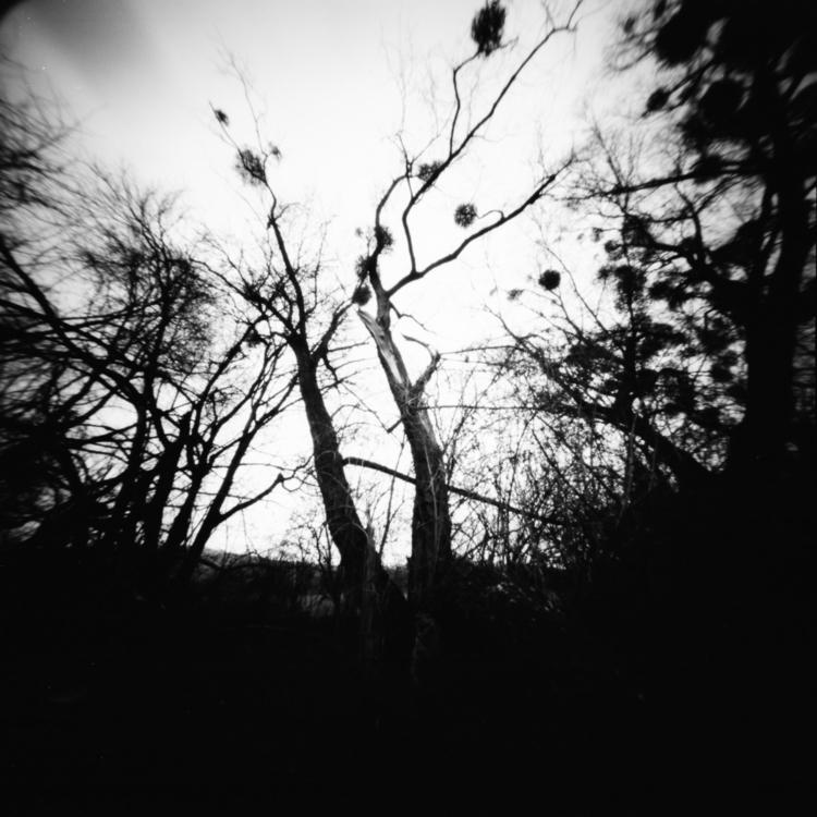 series trauma - pinhole, filmphotography - martinakettner | ello