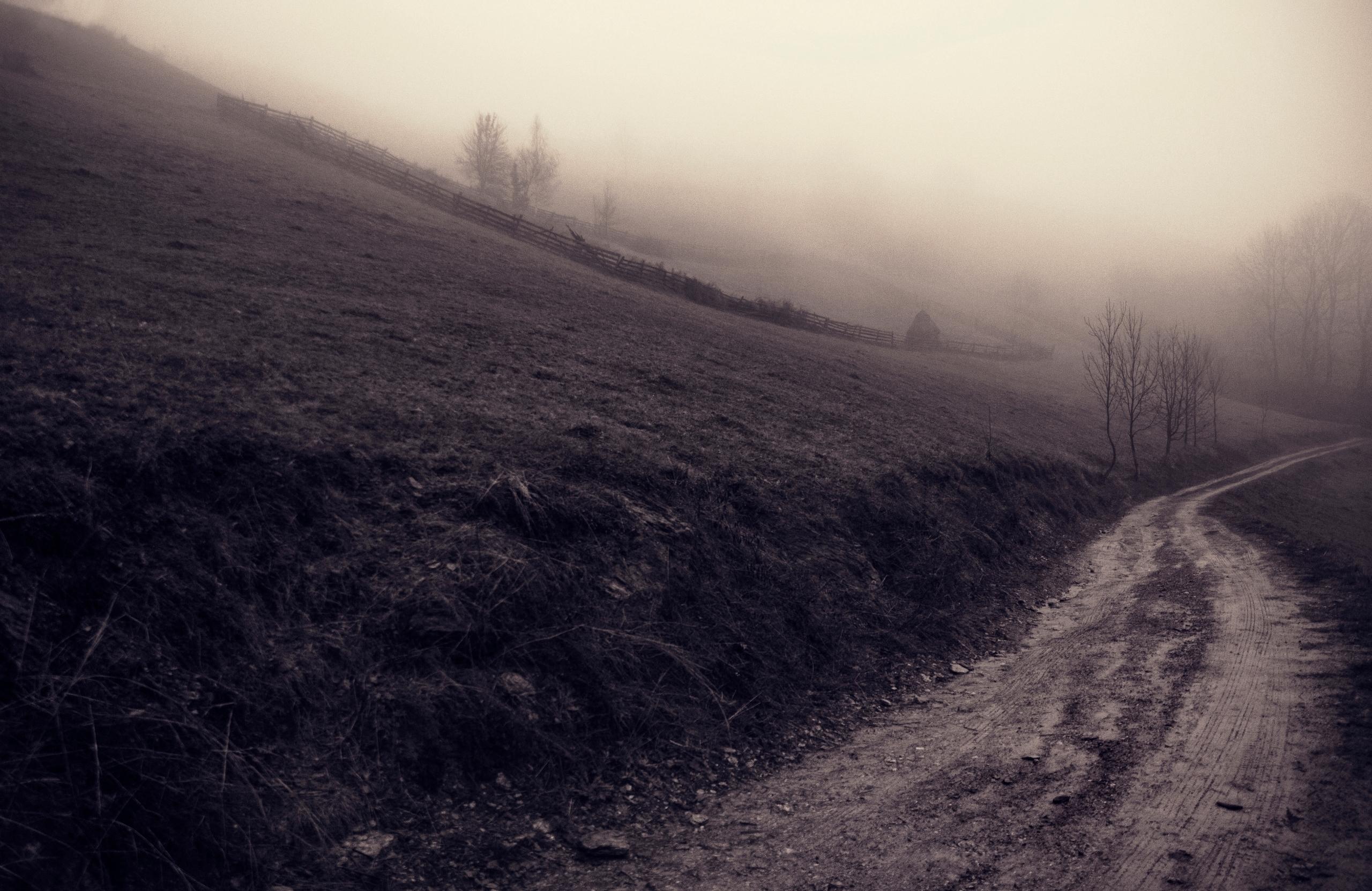 Muntele Sacelului-Romania. Mist - panioan | ello