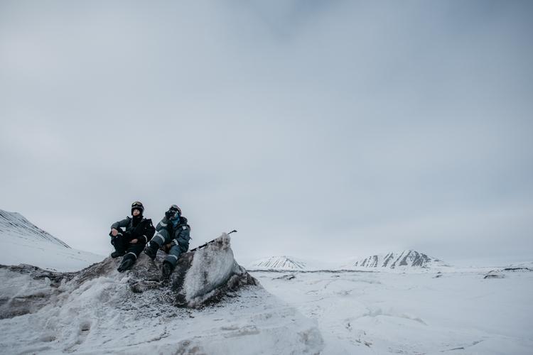 Polar bear watch - arctic, travel - sturmsucht | ello