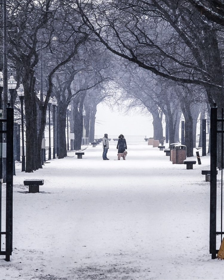 Chicago, snow, winter, photography - craftonandrew | ello