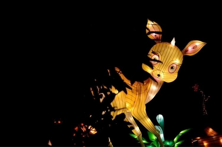 Chiswick Lantern Festival 2017  - memoriesofacamera | ello