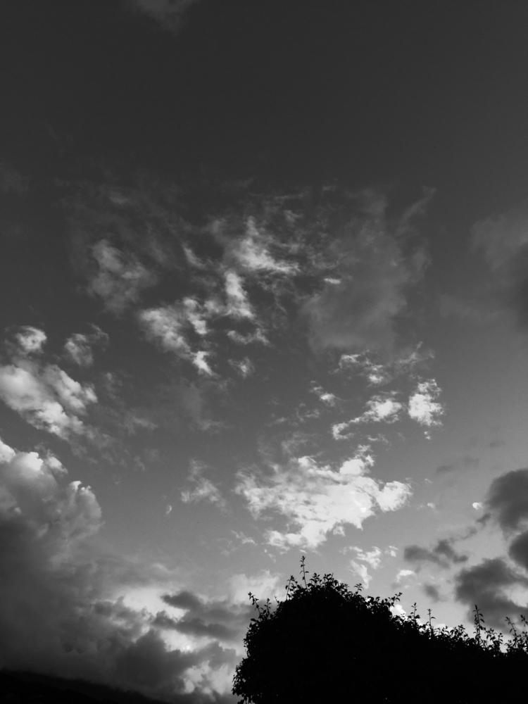 evenings evenings - SanPedroLasHuertas - arturogodoym | ello