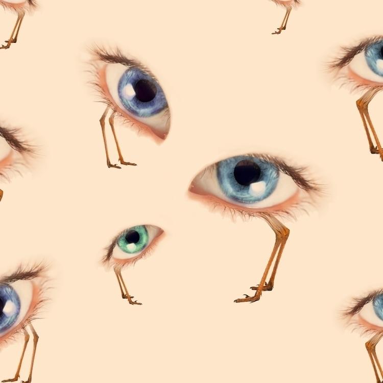 Eyes Bird - Macioce design - macioce | ello