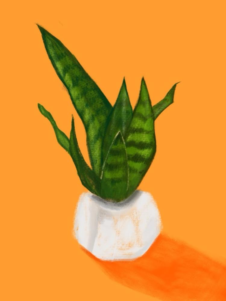 Plant Study - illustration, art - bitweirdthat | ello