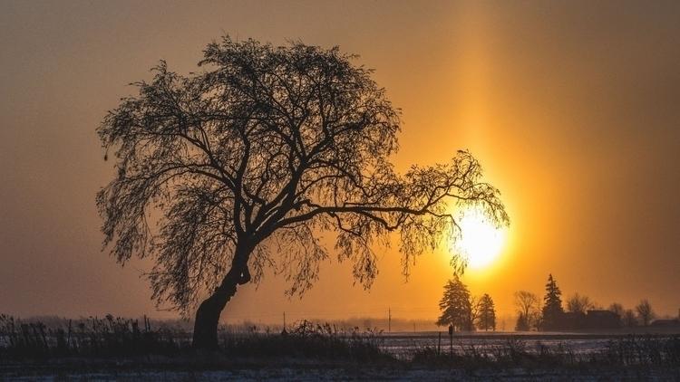 sunrise January beautiful - sun - vnrphotography | ello