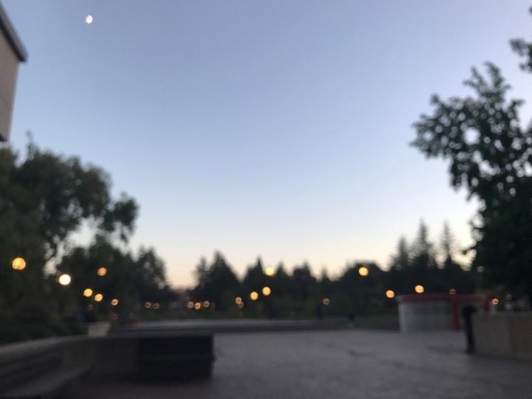 brighterthansunshine Post 28 Jan 2018 02:04:31 UTC | ello