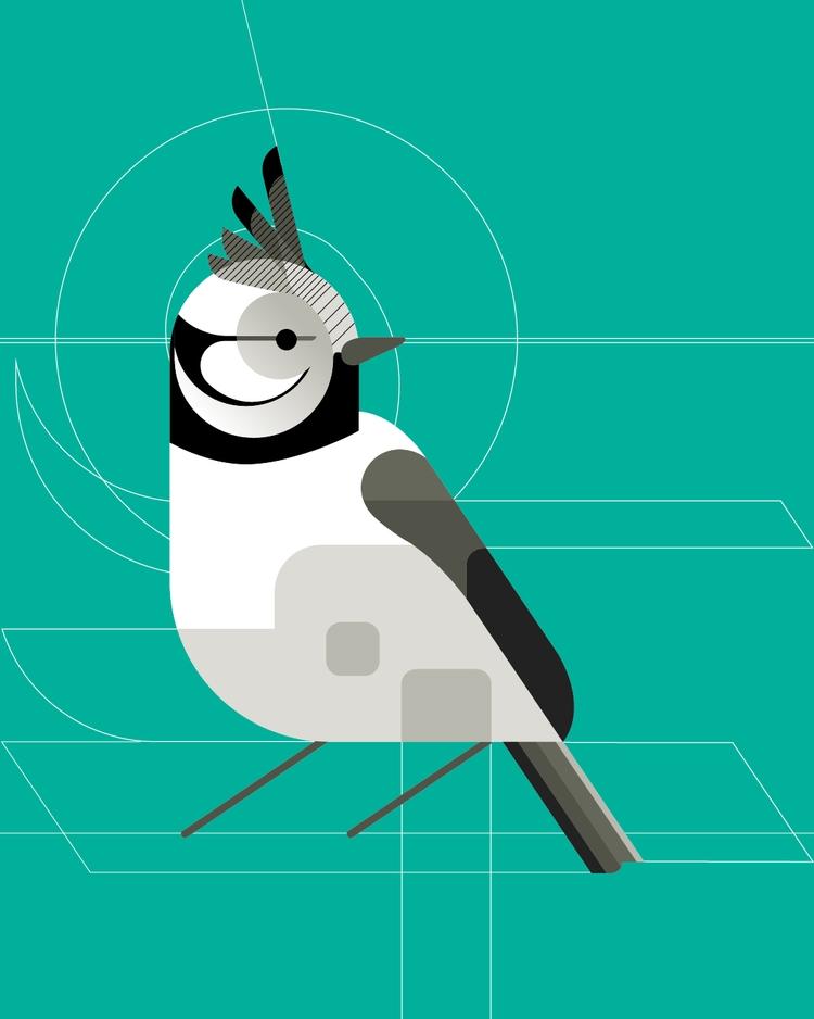 Crested Tit - bird, illustration - bentheillustrator | ello