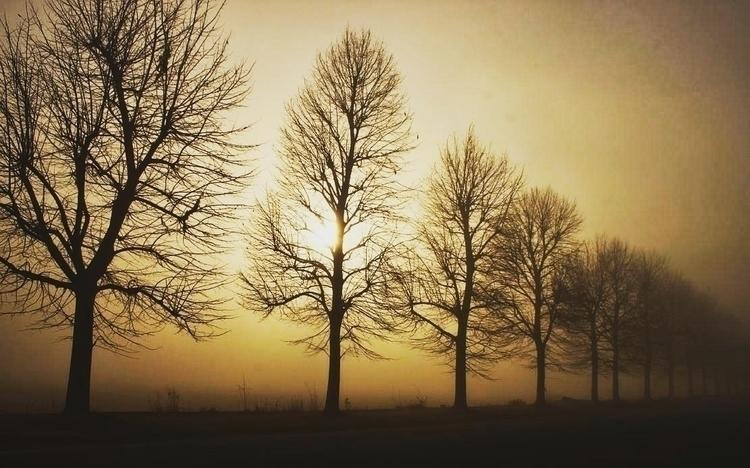 land mist - gabrieldascalu | ello