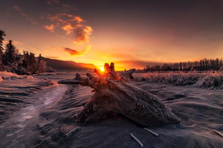 Freezing sunsets dead winter ha - brandonvrvilo | ello