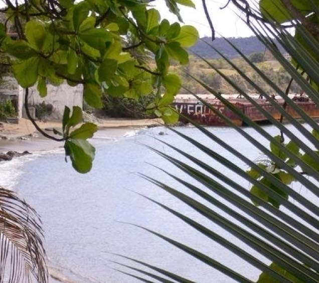 Vieques, Puerto Rico - mlvmt   ello