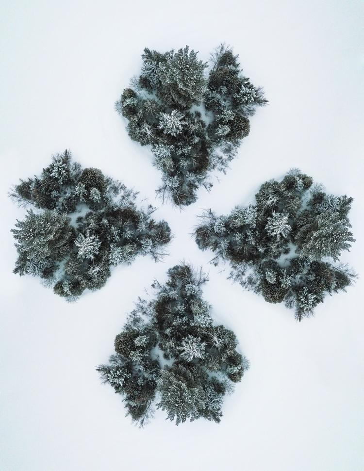 4 heads island - drone, winter, trees - lcbphoto | ello