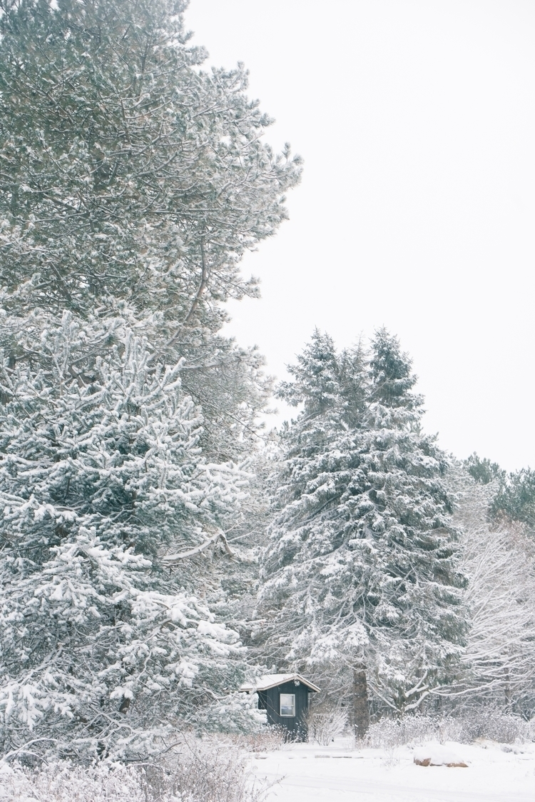 Winter walks great deal clear m - sglynnphoto | ello