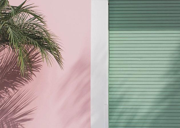 Bark Los Angeles, CA | 2017 Fra - francois_aubret | ello
