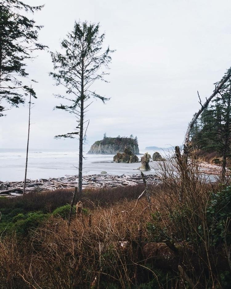 Overcast afternoons coast - nature - gradymoran | ello