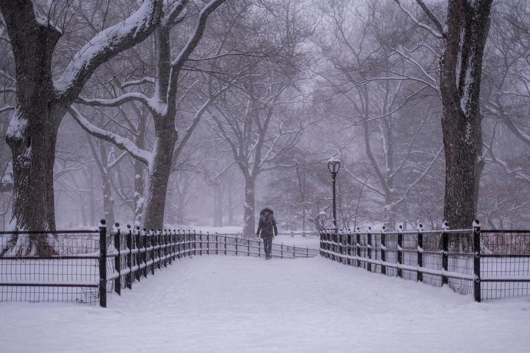 Stroll Central Park - asheh | ello