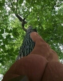 part thrusting branches beneath - uncutdiamonds | ello