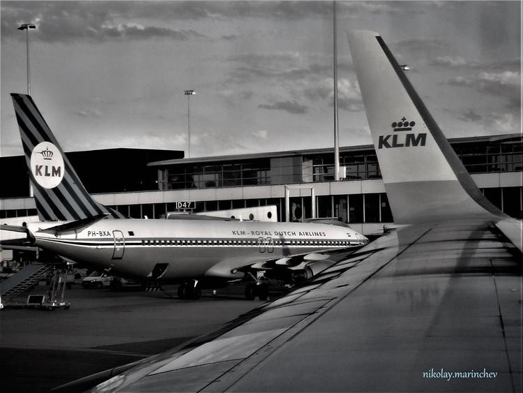 KLM livery AMS, Schiphol Airpor - niki_m | ello