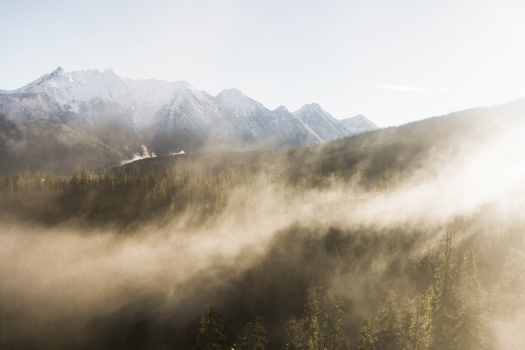 foggy morning mountains fall - goodmorning - nellbishop | ello