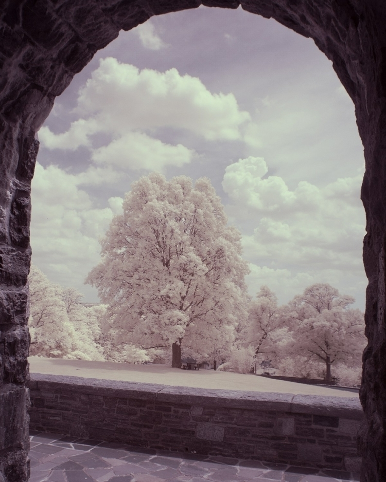 nikon, infrared, d70s, nikkorlens - therealguyphotography | ello