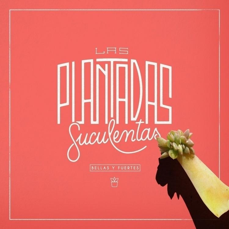 Create - lettering, design, typography - federicofigueroa   ello