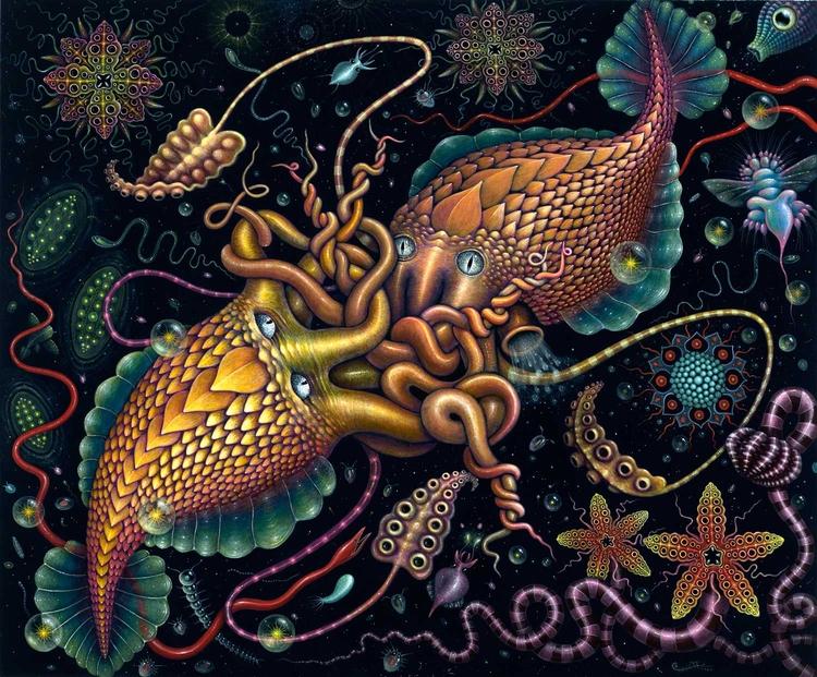 Cephalopods ~ 2016 - 20 24 (51  - rsconnett | ello