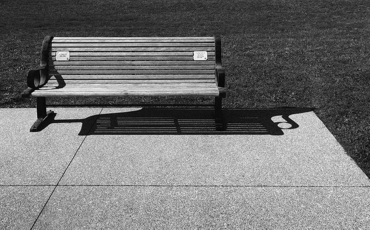 Burlington Memorial Park Bench - patrickchuprina | ello