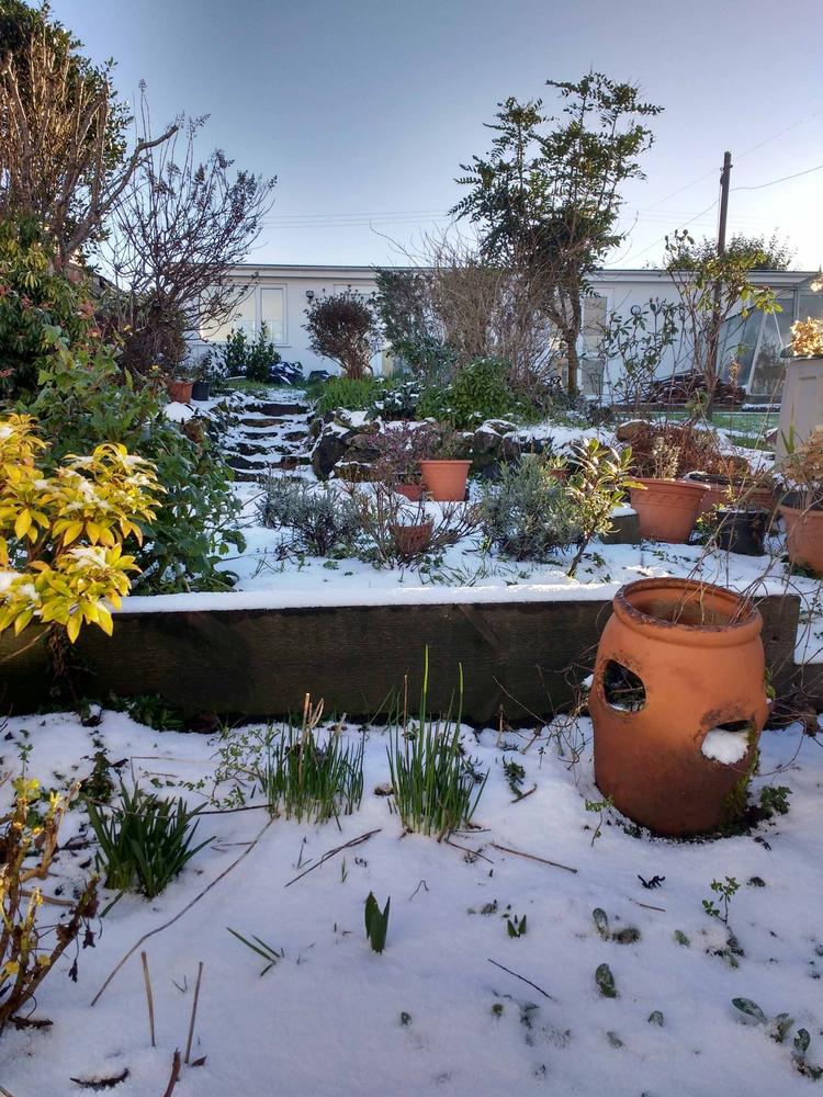 RARE SITE... ...snow Cornwall.  - johnhopper | ello