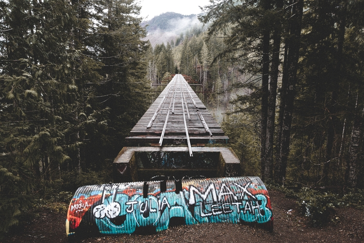 Vance Creek Bridge, Washington - motvd | ello