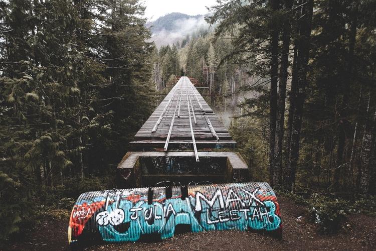 Vance Creek Bridge, Washington - motvd | ello