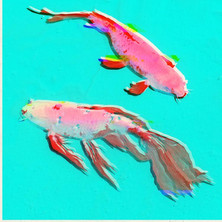 tribute Koury - fish, koi, photo - chelsea_northrup | ello