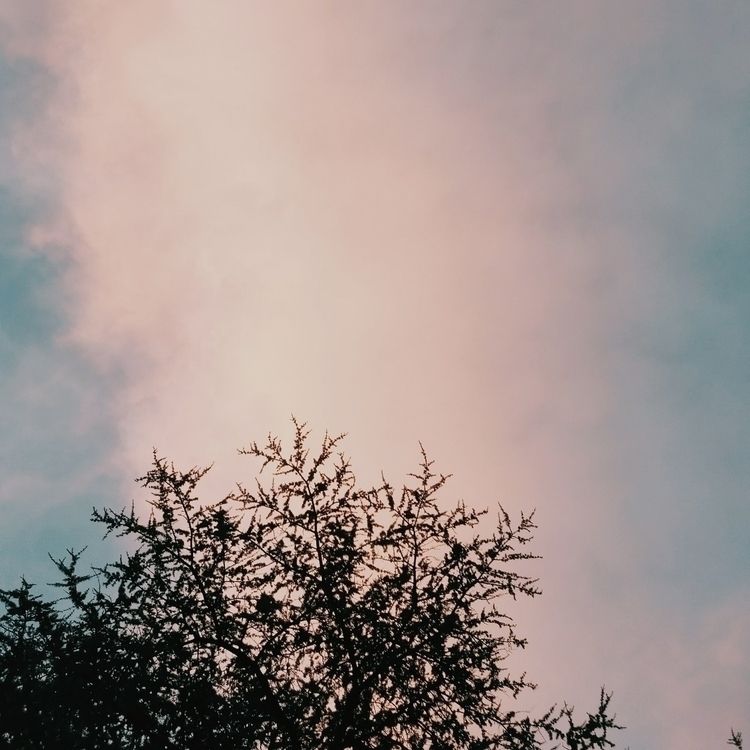 Beautiful sky ᴍᴏᴅᴇʟ: ᴄᴀᴍᴇʀᴀ: Ce - mikusblue_ph | ello