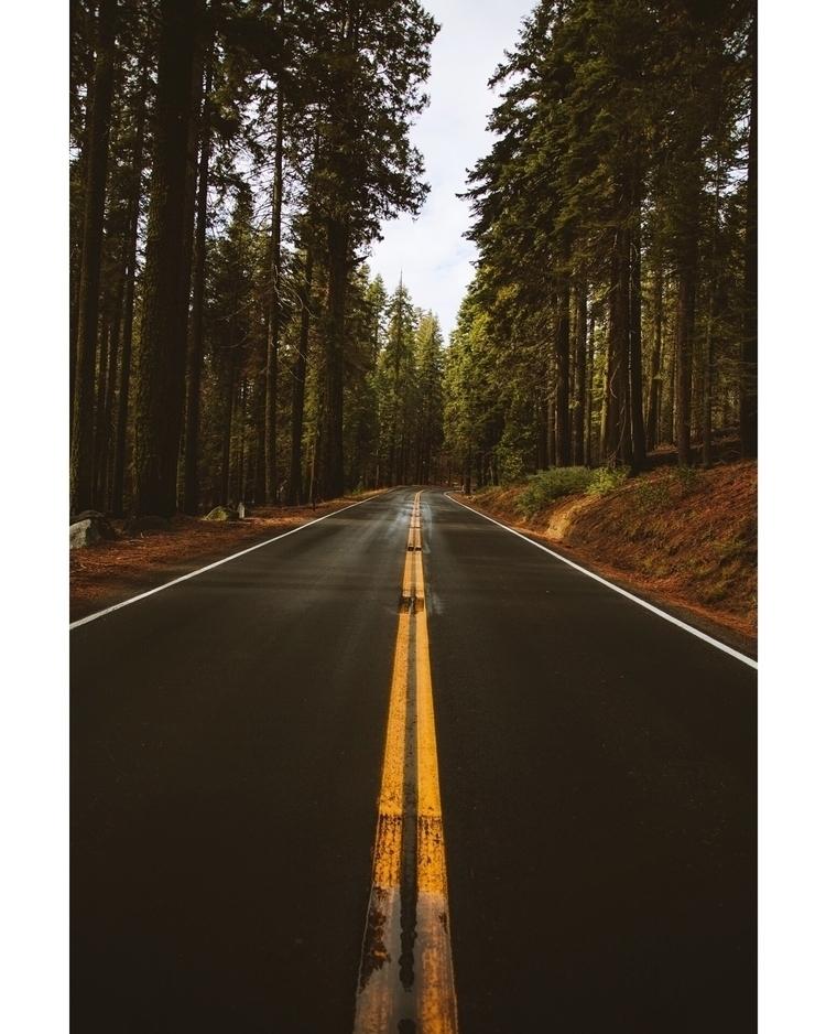 Yosemite Roads, California... S - danielparedes | ello