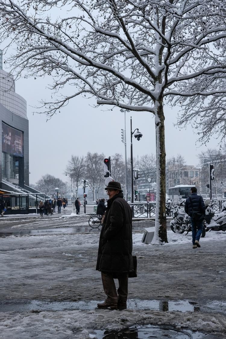 Waiting snow covered trees - paris - leabenatar | ello