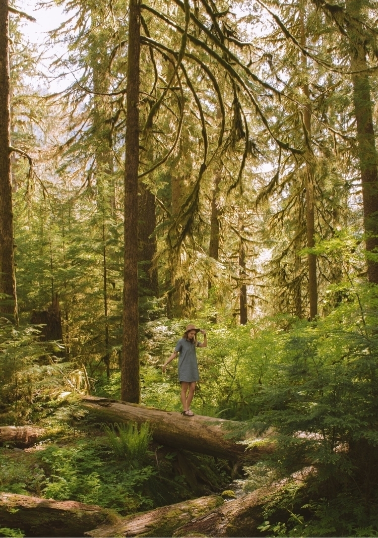 Olympic National Park featuring - kristenmayx | ello