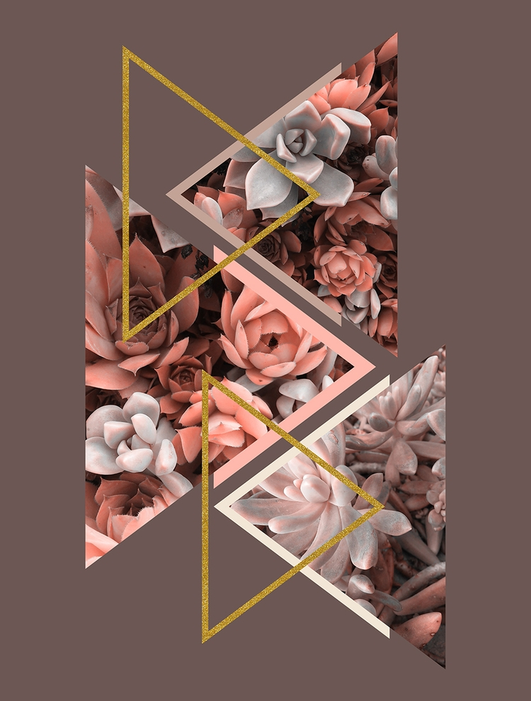 Elegant Succulents Submitted De - designdn | ello