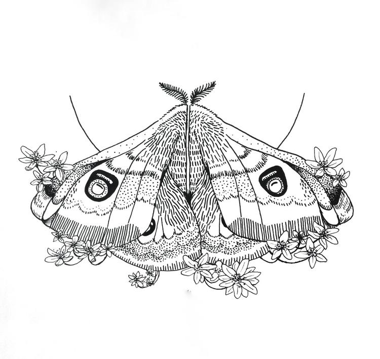 Moth 11,9cm 17,8cm - henryink | ello