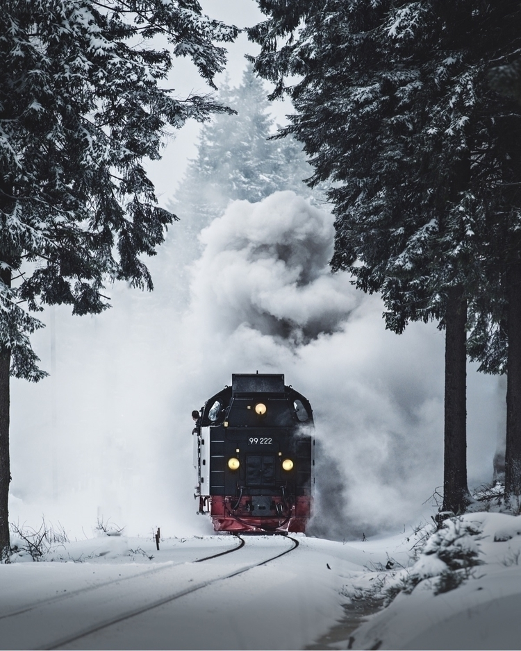 brockenbahn harz national park  - ericreinheart | ello