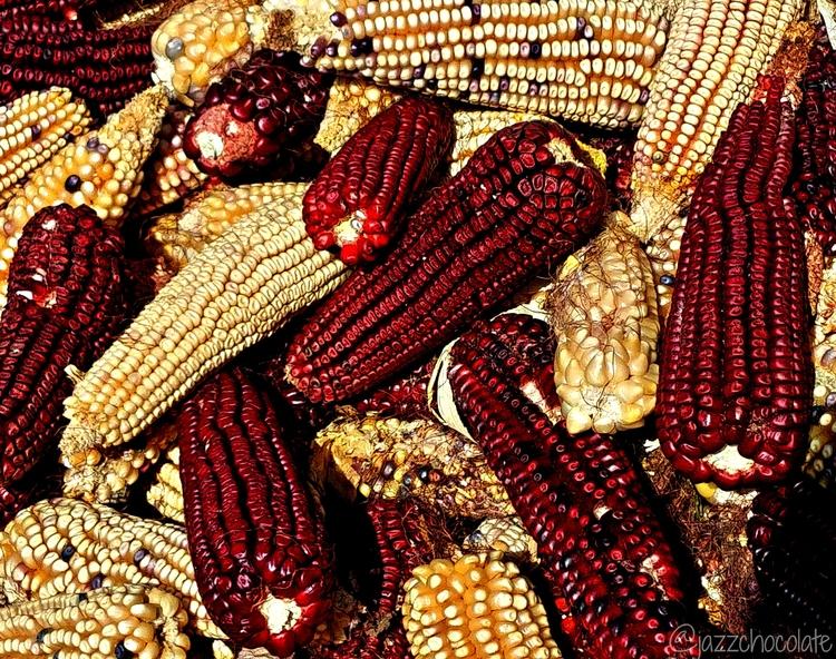 Centli - corn, maíz, Mexico, Xochimilco - jazzchocolate | ello