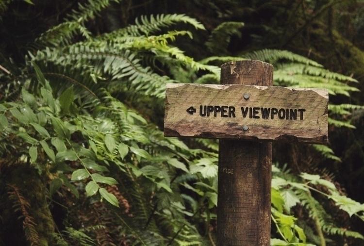 photography, oregon, pnw, adventure - rhodesend | ello