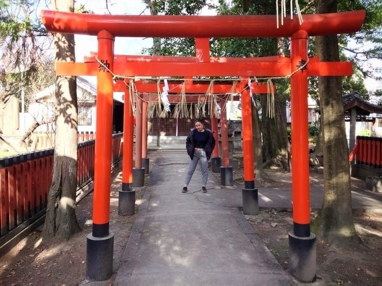 Japan - japan, japon, tokyo - hanabis | ello