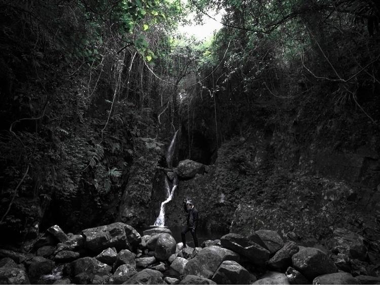 山海 原始之地 - forest - matthewpho_ | ello