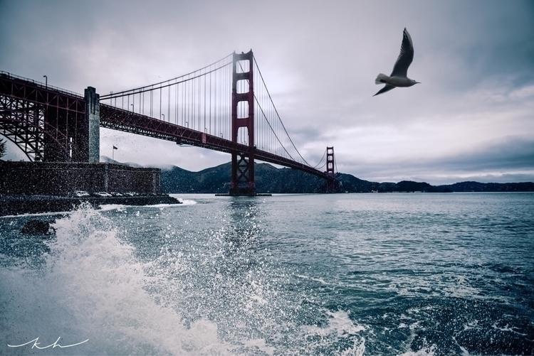 cold foggy day bay - california - kt_hubert   ello