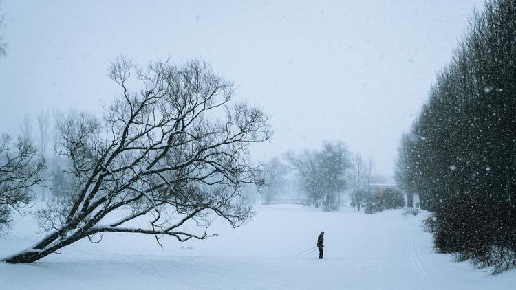 day winter - ellophotography, fujifilm - viktor-balaguer | ello
