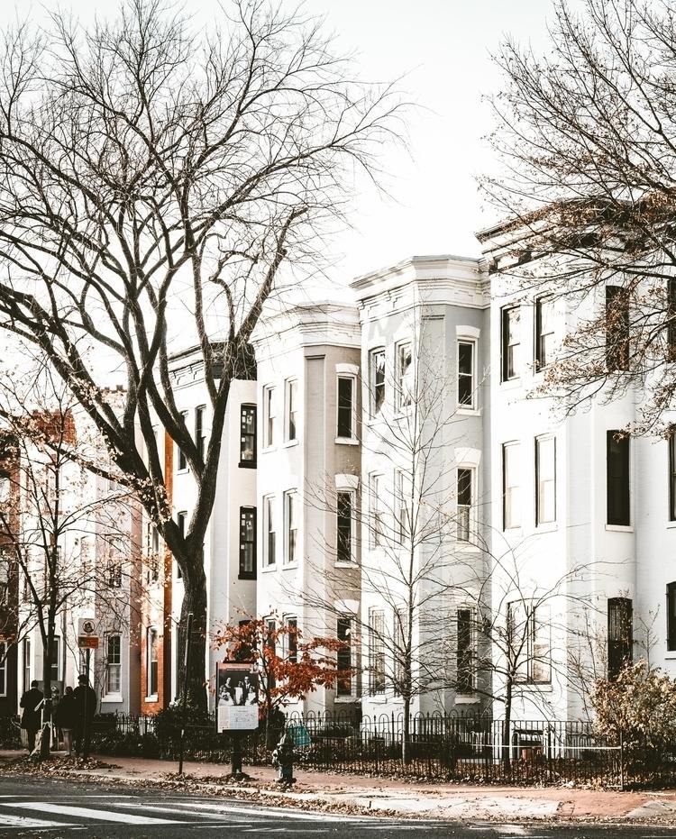 Washington DC streets - washingtondc - dccitygirl | ello