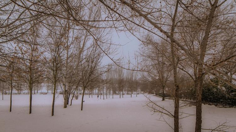 Woman walking snow. 09/02/2018  - adrianapariciosanz | ello