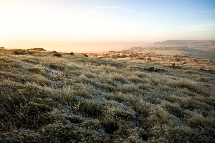 Utah horse preserve, 2017. real - katherineacart | ello