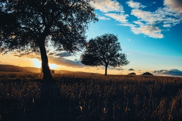 Nature, Sunset, Spain, Photography - photoscane | ello